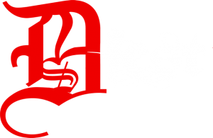 d2s-fest-logo-flat